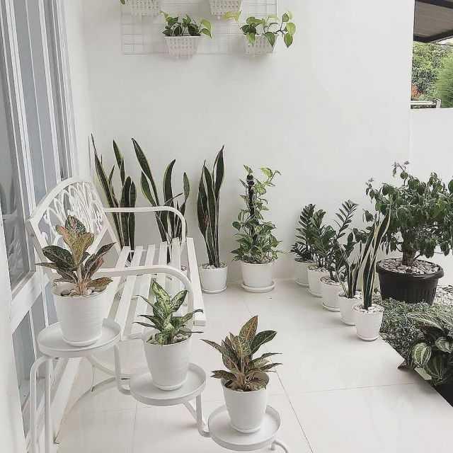 Desain 1 - Ide Taman Mini Depan Rumah Teres Yang Bisa Diterapkan Dirumahmu