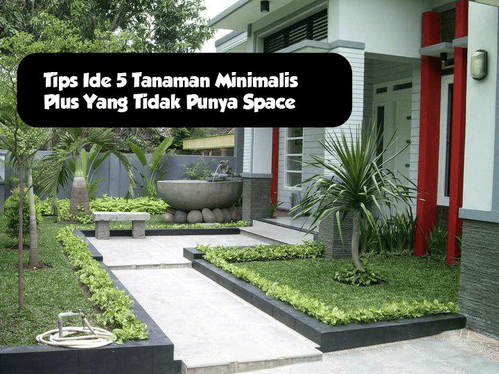 5 Ide Taman Mini Depan Rumah Teres Yang Bisa Diterapkan Dirumahmu